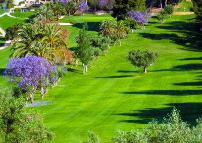 Aerial Photo Altea Golf Club